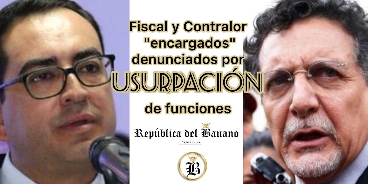 Pérez y Celi estarían simulando cargos públicos violentando la Constitución