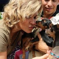 #FlashBananero| Candidata Viteri besa perros vagabundos por votos