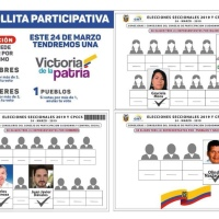 CNE intenta descalificar candidatos que recibieron el respaldo de Correa