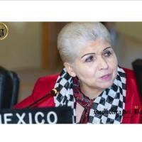 Encontronazo por Bolivia en OEA entre delegada México y Luis Almagro