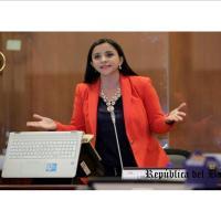 Nos vimos obligados a aprobar el informe de la Ley Económica para intentar su archivo, afirma Lira Villalva