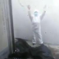 Guayaquileños deben buscar cuerpos de familiares ellos mismos, entre cadáveres en el IESS